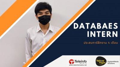 4 เดือนกับตำแหน่ง Database Intern ของผม