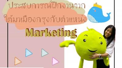 ประสบการณ์ฝึกงานจากใต้มาเมืองกรุงกับตำแหน่ง Marketing